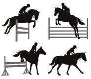 Esportes equestres ajustados Imagem de Stock