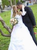 Esposa y marido de la boda fotografía de archivo