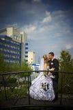 Esposa y marido de la boda Imagenes de archivo