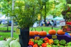 Esposizione attirante del mercato degli agricoltori di DeNoble Immagine Stock Libera da Diritti