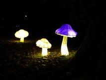 Esposizione cinese della lanterna del fungo Immagini Stock Libere da Diritti