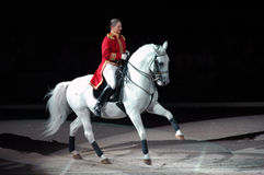 Esposizione degli Stallions di Lipizzaner Immagini Stock Libere da Diritti