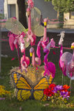 Esposizione dei fenicotteri, della farfalla e dei fiori Fotografie Stock