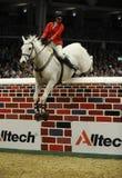 Esposizione del cavallo fotografia stock libera da diritti