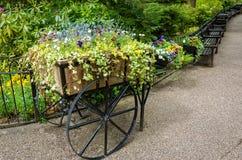 Esposizione del fiore del giardino della primavera Fotografia Stock Libera da Diritti