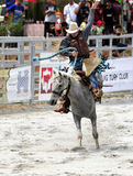Esposizione del rodeo fotografie stock