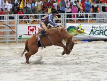 Esposizione del rodeo Immagine Stock