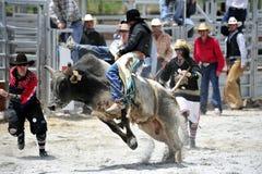 Esposizione del rodeo Fotografia Stock Libera da Diritti