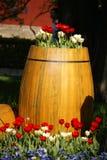 Esposizione del tulipano immagini stock libere da diritti