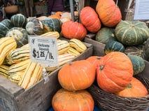 Esposizione della zucca e della zucca al mercato degli agricoltori di Corvallis Fotografia Stock