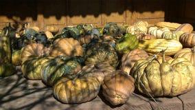 Esposizione delle zucche nell'ambiente della casa dell'agricoltore in campagna Cina fotografie stock