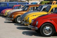 Esposizione dello scarabeo di Volkswagen Fotografie Stock Libere da Diritti