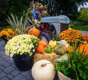 Esposizione di autunno e del raccolto Immagine Stock