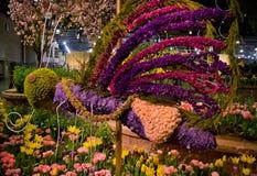 Esposizione di fiore floreale dell'ape Fotografia Stock