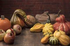 Esposizione di ringraziamento con le zucche, le zucche ed i melograni sopra Fotografia Stock Libera da Diritti