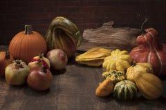 Esposizione di ringraziamento con le zucche, le zucche ed i melograni sopra Fotografie Stock Libere da Diritti