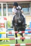 esposizione di salto equestre Fotografia Stock