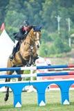 esposizione di salto equestre immagine stock
