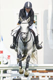 esposizione di salto equestre Fotografie Stock Libere da Diritti