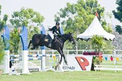 esposizione di salto equestre fotografia stock libera da diritti