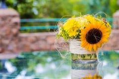 Esposizione gialla del fiore del girasole sulla tavola di vetro fotografia stock