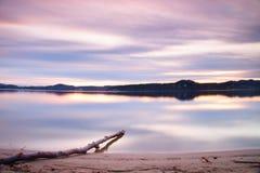 Esposizione lunga della riva del lago con il tronco di albero morto caduto nella sera di autunno dell'acqua dopo il tramonto Immagini Stock