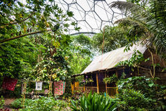 Esposizione malese della casa della foresta pluviale ad Eden Project Fotografia Stock