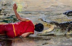 Esposizione pericolosa del coccodrillo Fotografie Stock