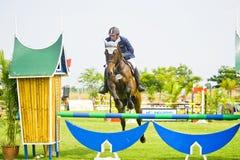 esposizione prima di salto equestre della tazza Fotografia Stock Libera da Diritti