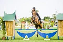 esposizione prima di salto equestre della tazza Fotografia Stock