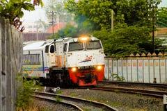 Espreite uma vaia com trem Fotos de Stock Royalty Free