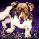 Espressione sveglia del cane Fotografia Stock