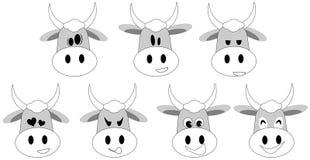 Espressioni piacevoli della mucca Immagine Stock