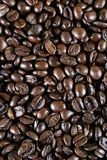 espresso кофе фасолей Стоковое Фото