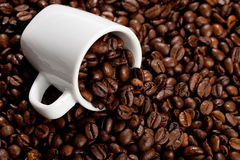 Espresso. A small espresso cup and some coffee beans Stock Image