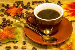 espresso Стоковые Изображения RF