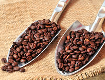 Espresso beans Stock Image