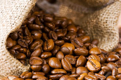 Espresso beans Royalty Free Stock Photography