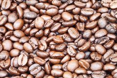 Espresso Blend Stock Photo