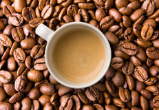 Espresso on Coffee Beans Stock Photos