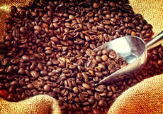 Espresso and coffee grain Royalty Free Stock Image