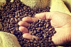 Espresso and coffee grain stock image