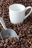 Espresso Cup and Beans Scoop Stock Images