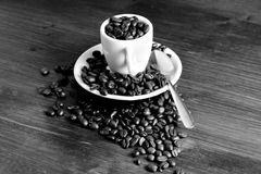 Espresso cup with coffee beans Stock Image