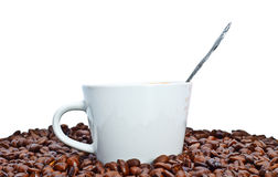 Espresso cup in coffee beans Stock Photography