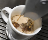 Espresso Drip. Ping into the foam Royalty Free Stock Photo
