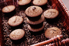 Espresso muffins Stock Images