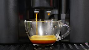 Espresso preparation in coffee machine stock video