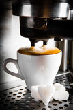 Espresso preparation. Gray coffee machine with white cup Royalty Free Stock Photo