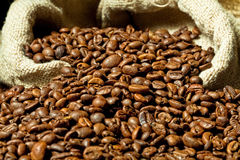 Espresso und Kaffeebohne Lizenzfreie Stockfotos